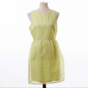 Blue Rain Francesca Soft Open Weave Dress Yellow